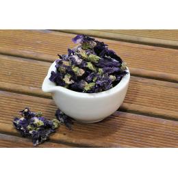 Mauve (malva sylvestris) - fleurs