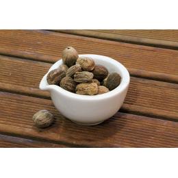 Muscadier (myristica fragrans)